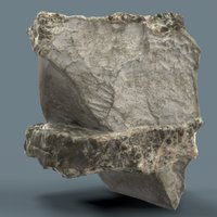 Suiseki Stone 20