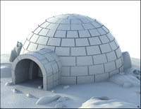 igloo iglo model