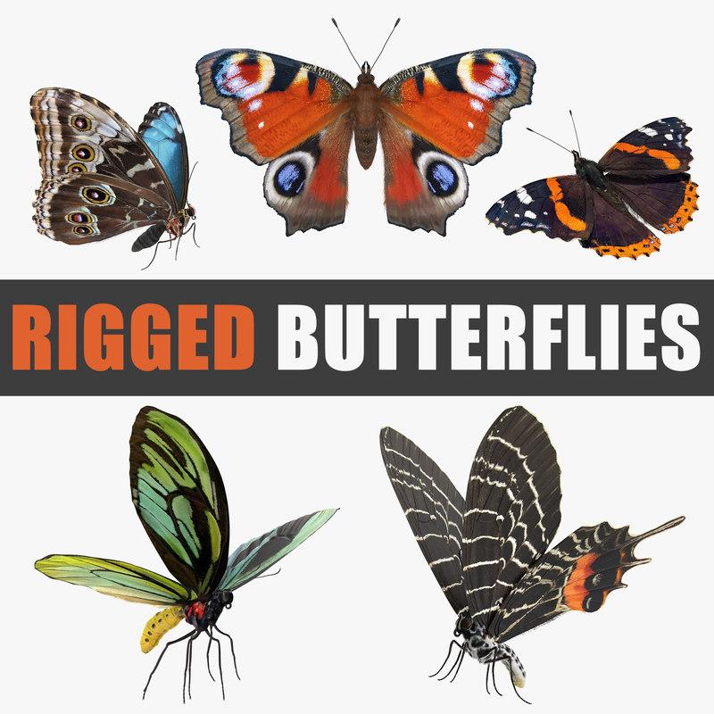 butterflies rigged io 3D model