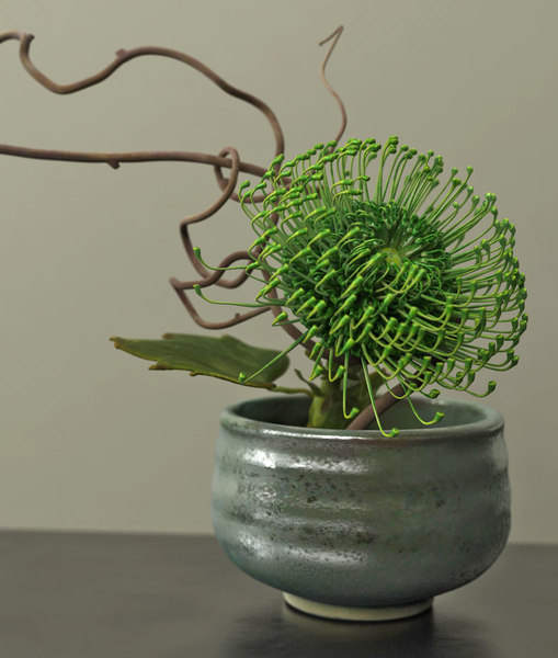 3D green protea ikebana ceramic model