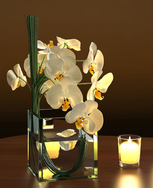 white orchids square vase 3D