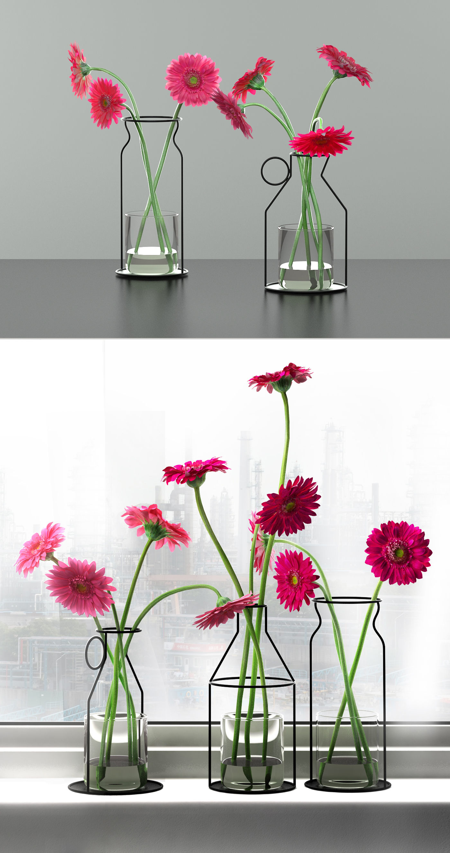 3D model gerbera daisies