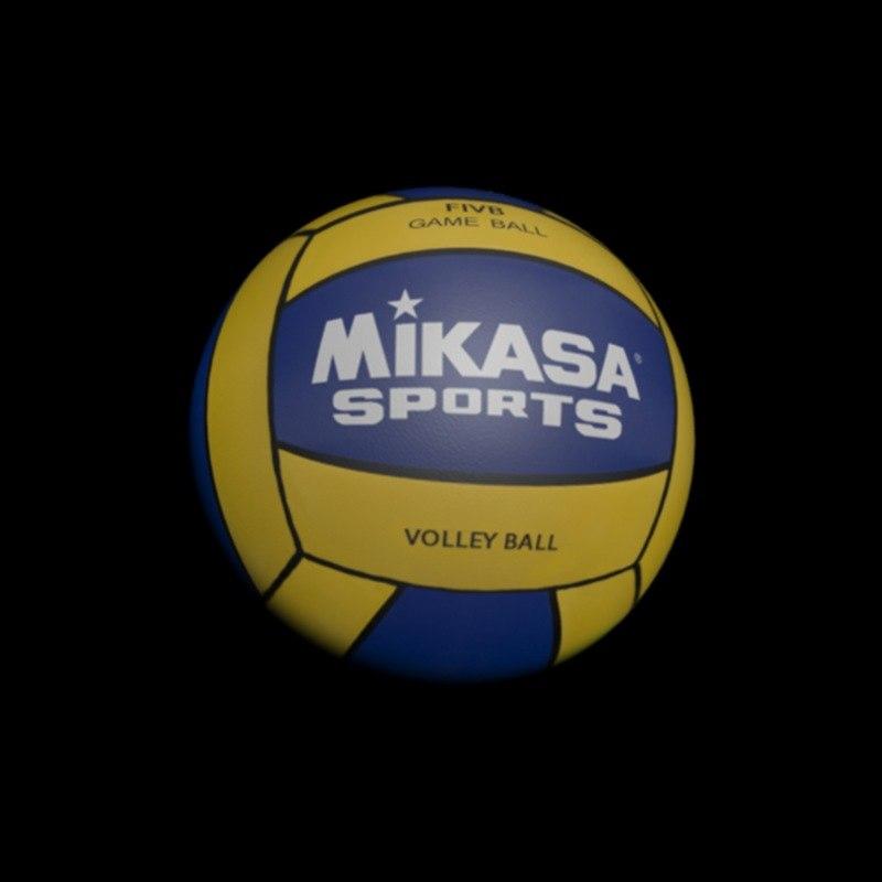 volleyball sport 3D