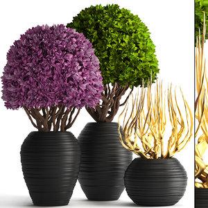 ornamental tree model