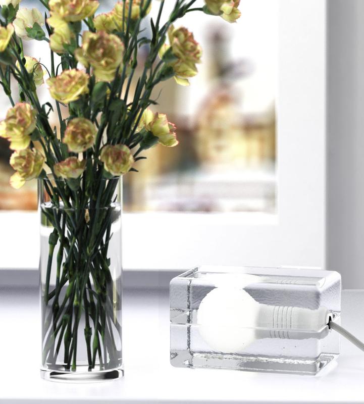 3D carnations block lamp model