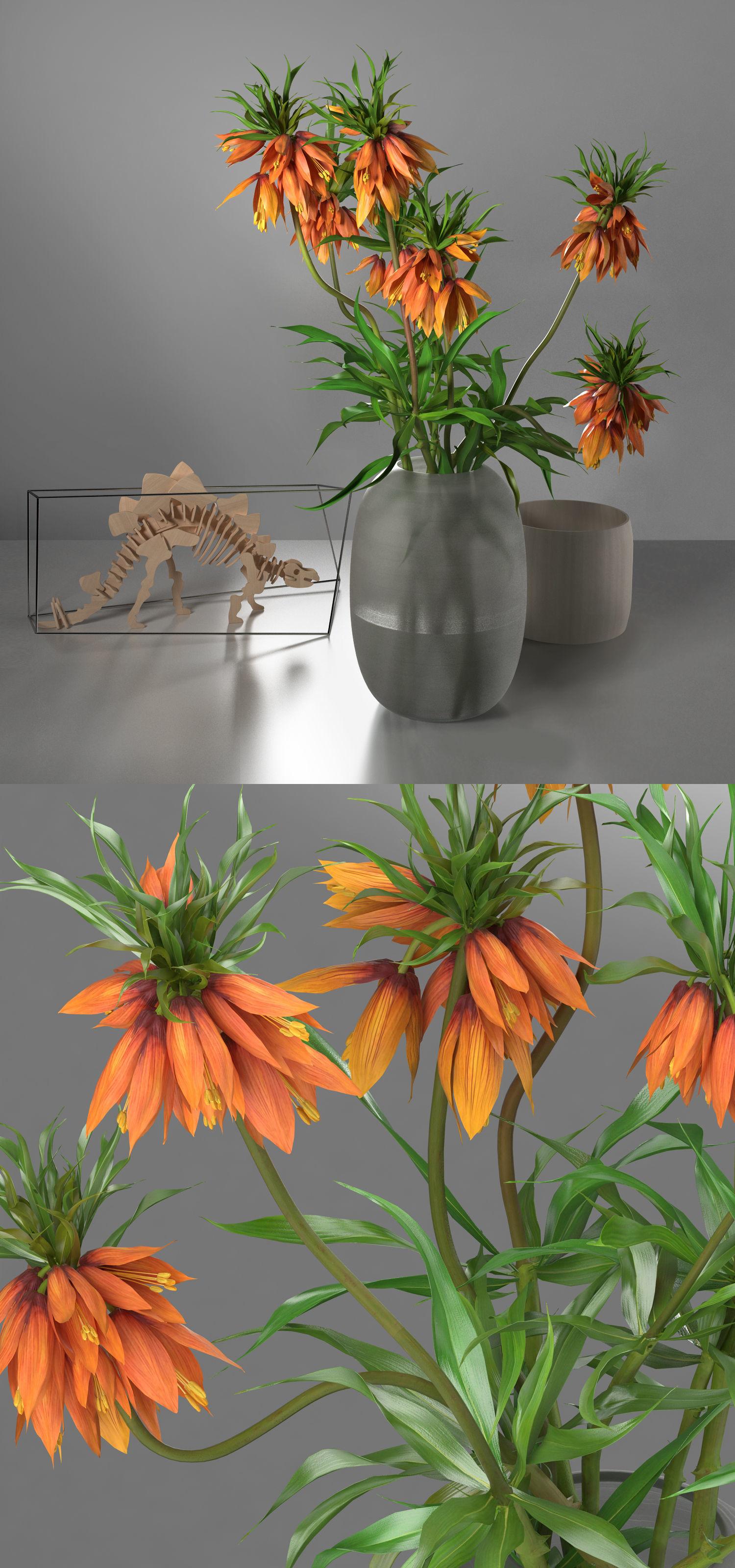 3D wooden dinosaur decoration set model