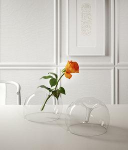 rose glass vase model