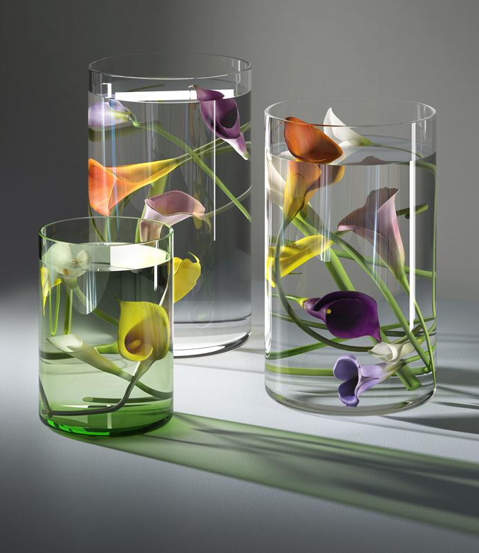 3D submerged callas model