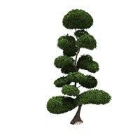 bush buxus styled 3D