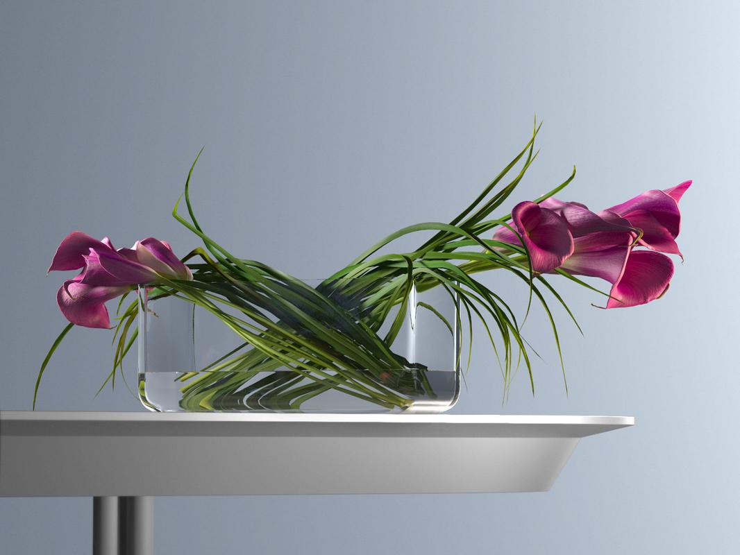 pink calla lilies rectangular model