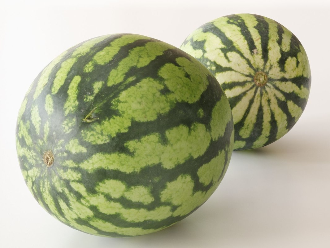 watermelons small 3D model