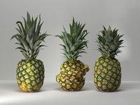 3D pineapples