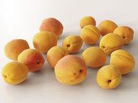 3D apricots model