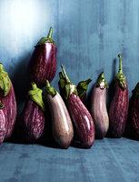 eggplants 3D model