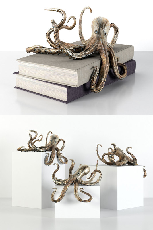 octopus shelf decor model