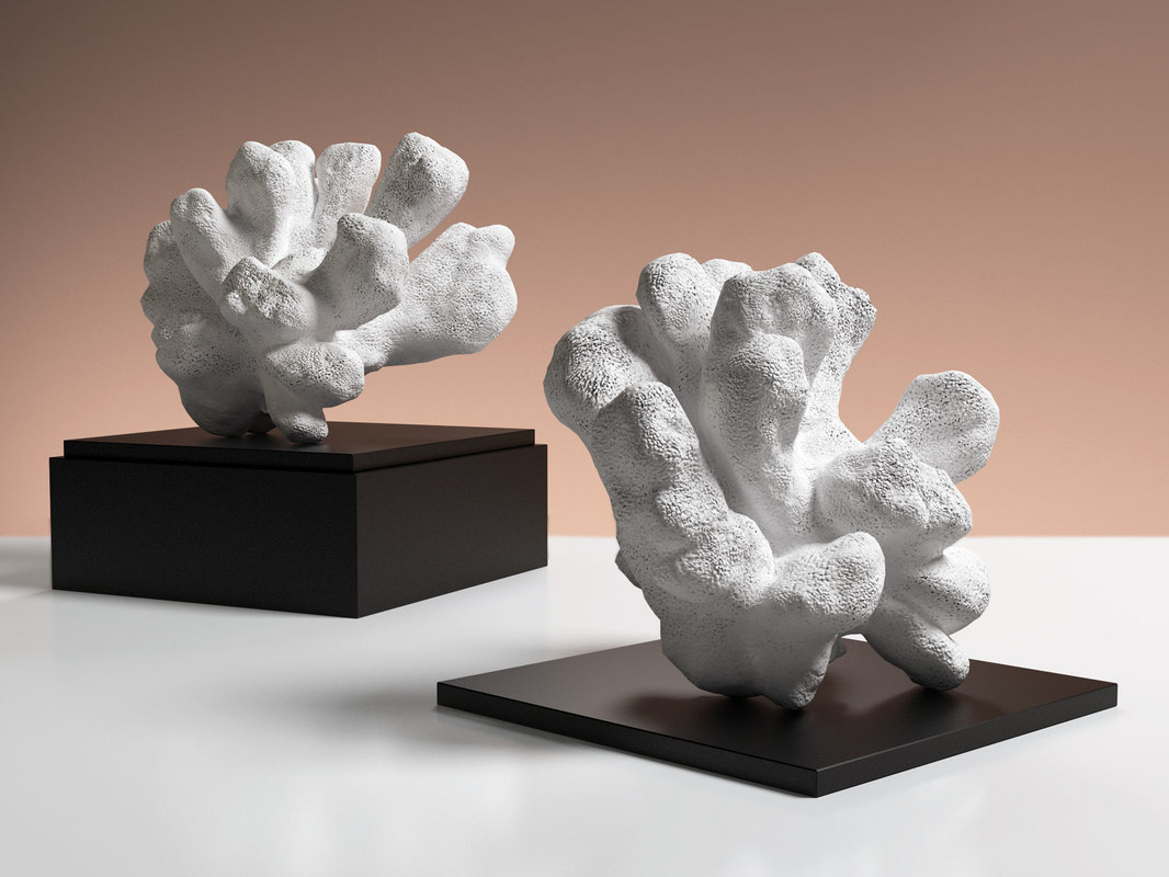 white reef coral sculpture 3D model