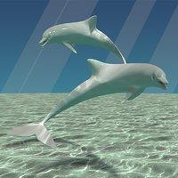3D model dolphin scene