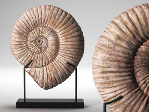 3D fossil iron-marble shell sculpture