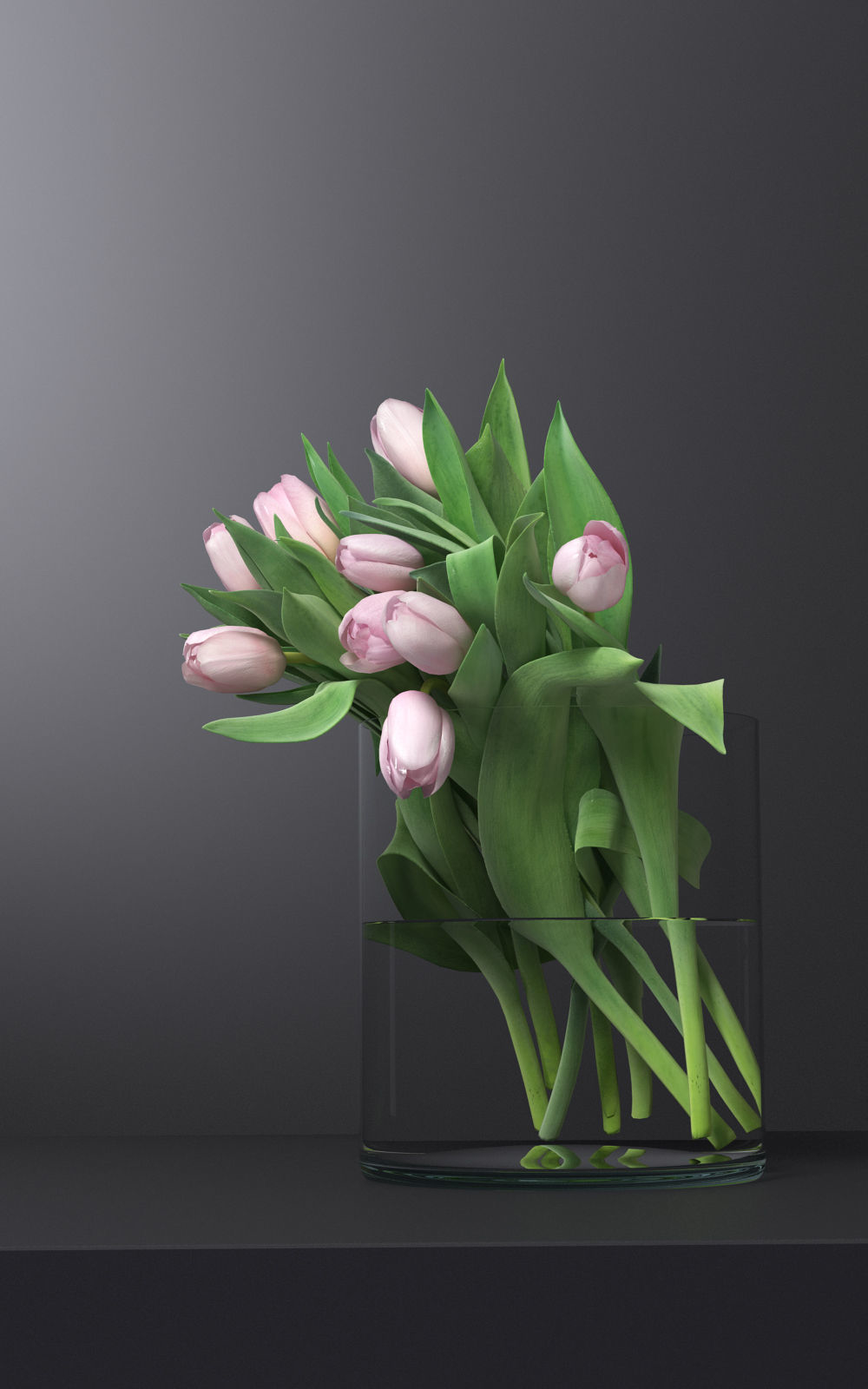 3D pink tulips