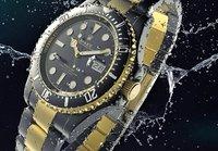 3D model rolex watch