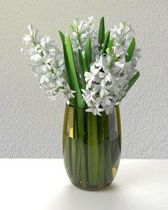 white hyacinths 3D model
