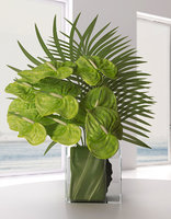 Green Anthuriums & Palm Leaves