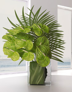 green anthuriums palm leaves model