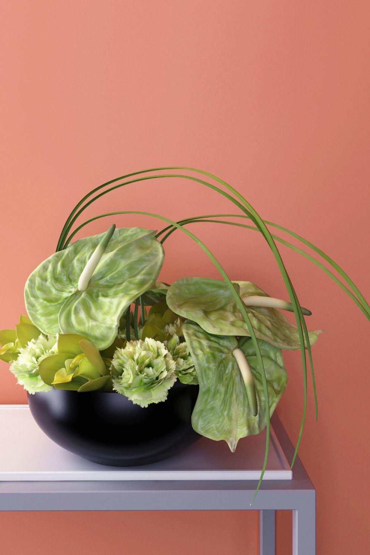3D model green anthuriums orchids ikebana