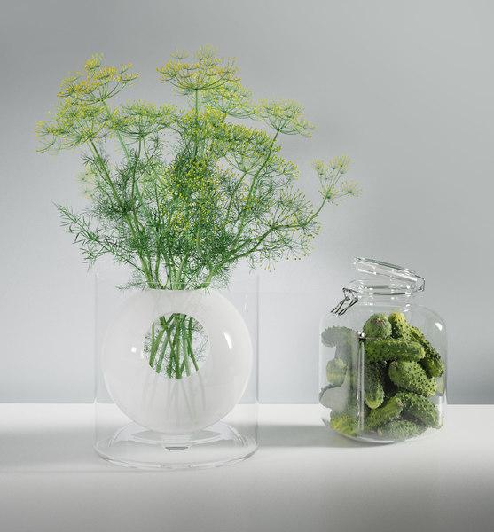 dill flowers cucumbers set 3D