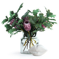 3D realistic glass oak proteas model