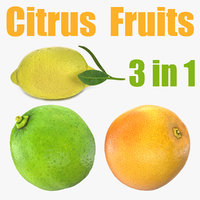 citrus fruits 3D model