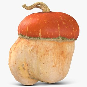 pumpkin small 3D model