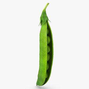 3D open green peas pod model