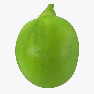 single green pea 3D model