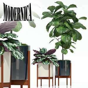plants 69 modernica pots 3D model