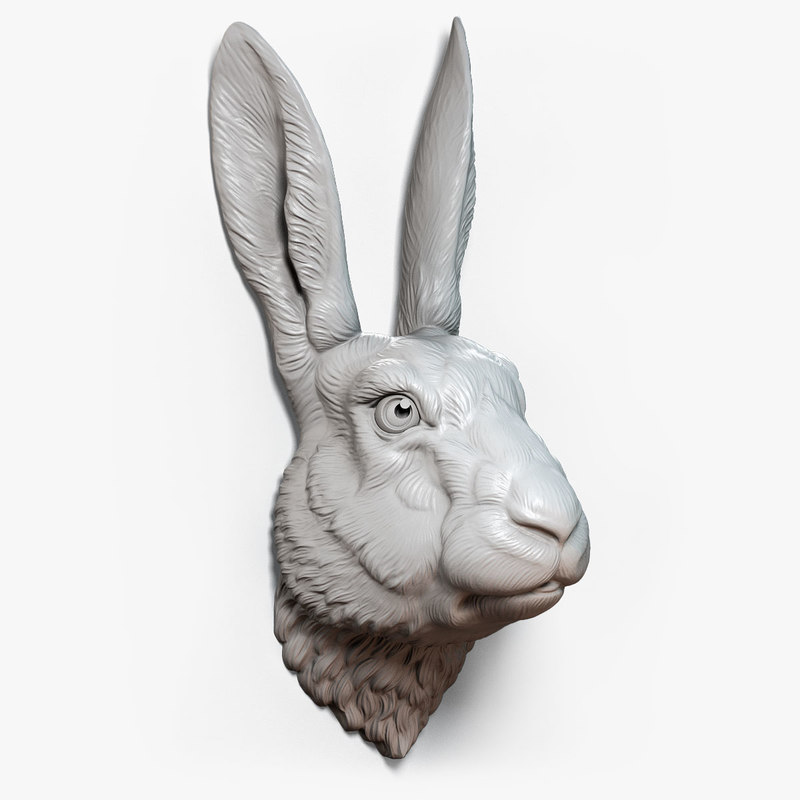 rabbit hare head sculpture model