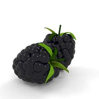 3D model blackberry berry black