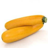 squash zucchini 3D