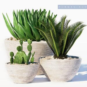 3D model plants set 150