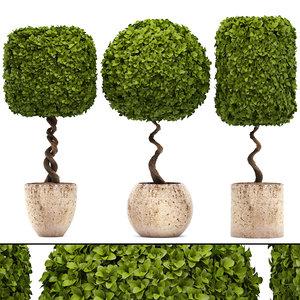 ornamental tree 3D