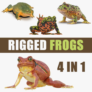 3D rigged frogs 3