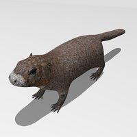 3D marmot