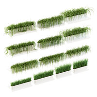 3D 13 grass shelves