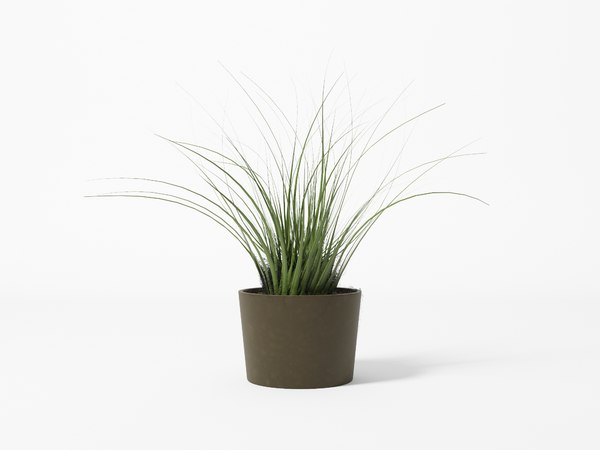Free Plants 3D Models for Download | TurboSquid