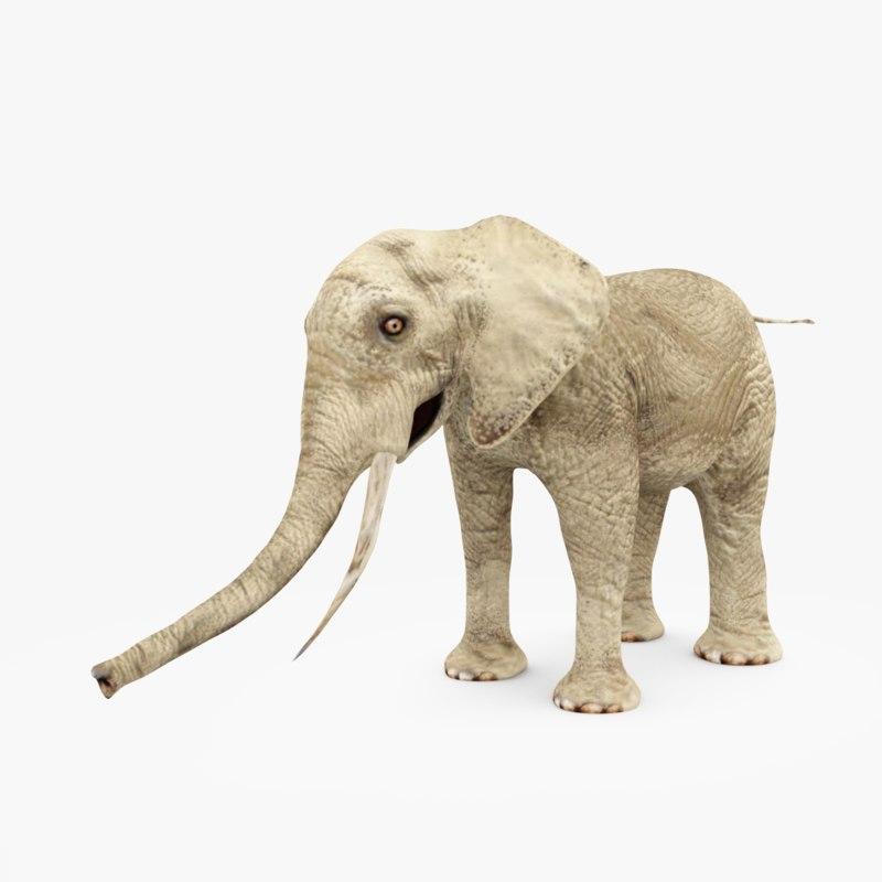 3D white elefant model