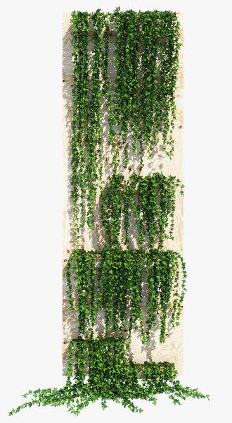 planter box ivy model