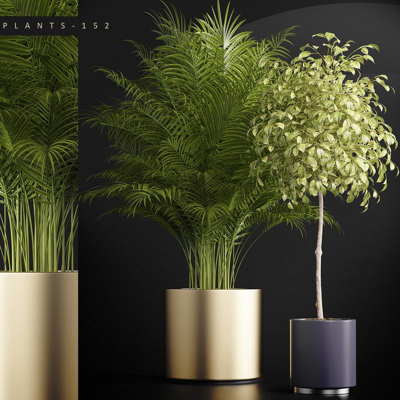 plants set 152 model