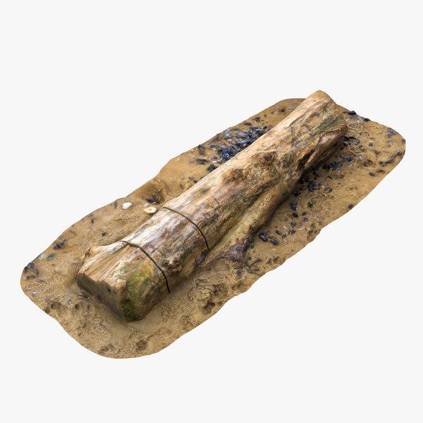 3D model tree trunk shore