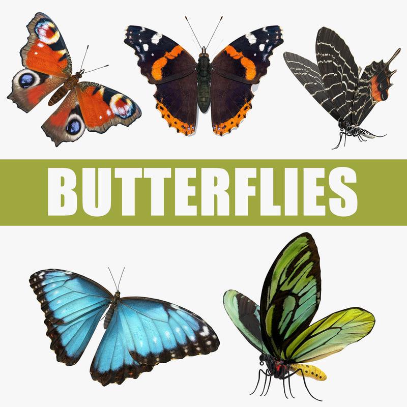 butterflies red admirable 3D model