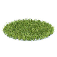 3D shaped grass model
